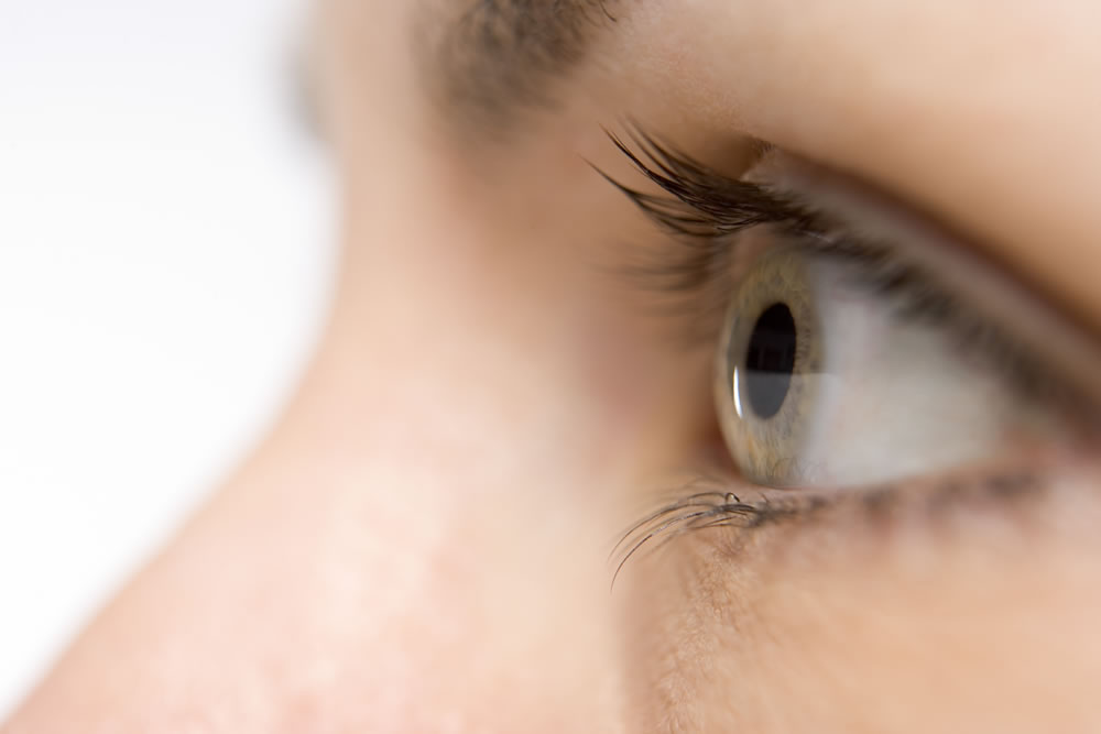 Eye health, eyelid